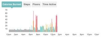 fitbit calorie graph